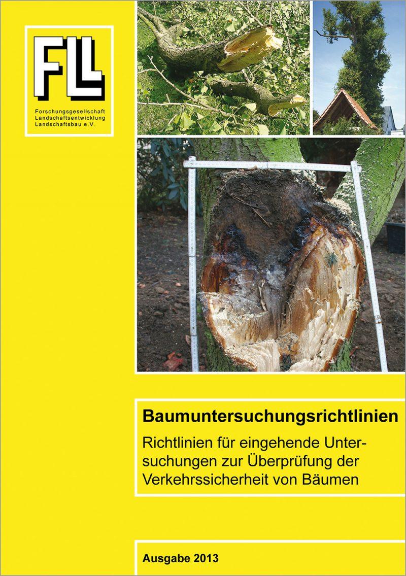 Baumuntersuchungsrichtlinien