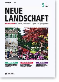 Neue Landschaft – 50€ Nachlass