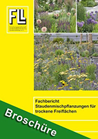 Fachbericht Staudenverwendung im öffentlichen Grün – Staudenmischpflanzungen für trockene Freiflächen